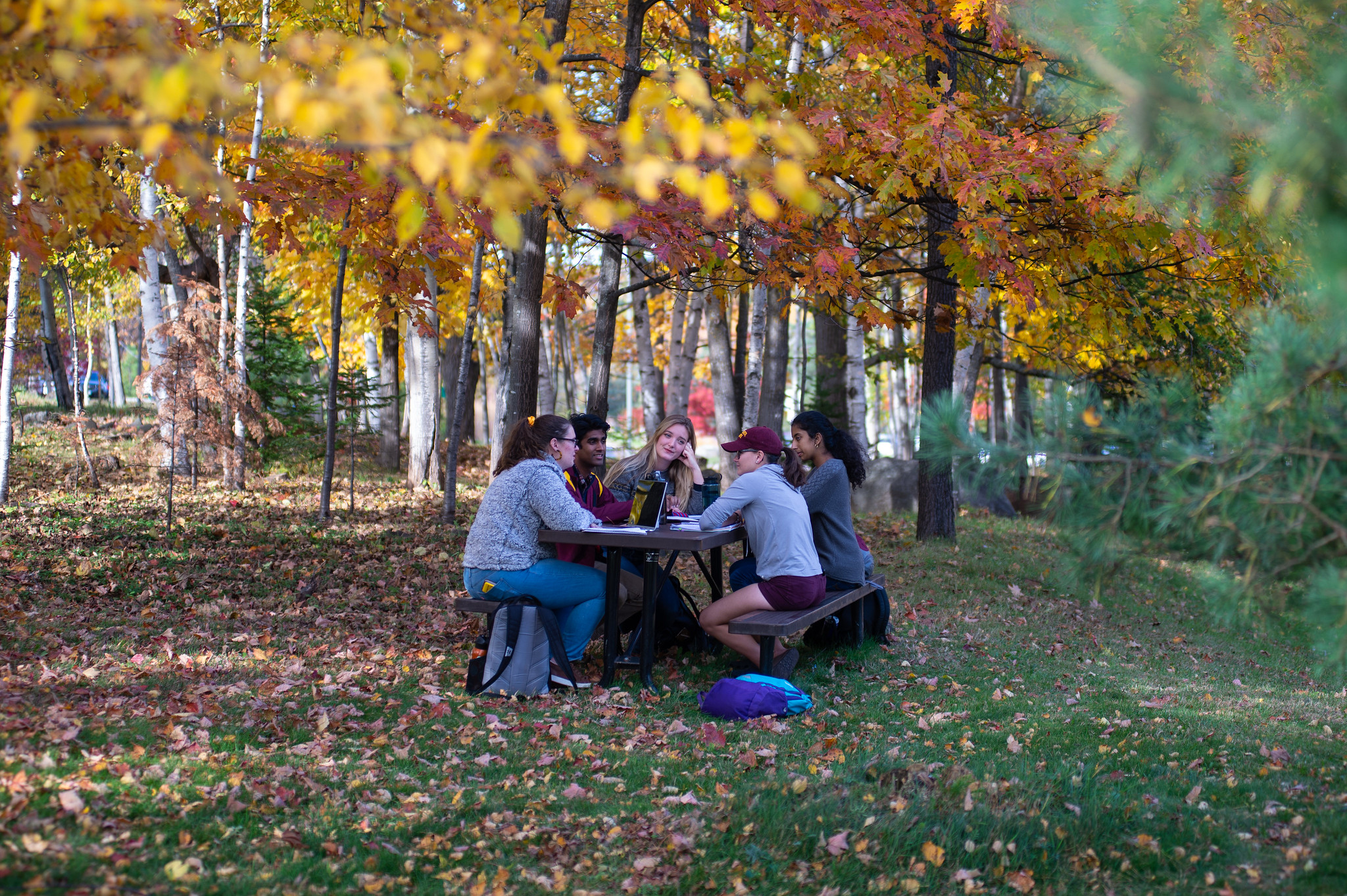Students sitting at a picnic table on a fall day